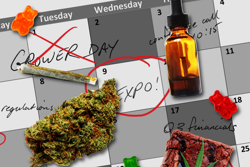 calendar of key cannabis events
