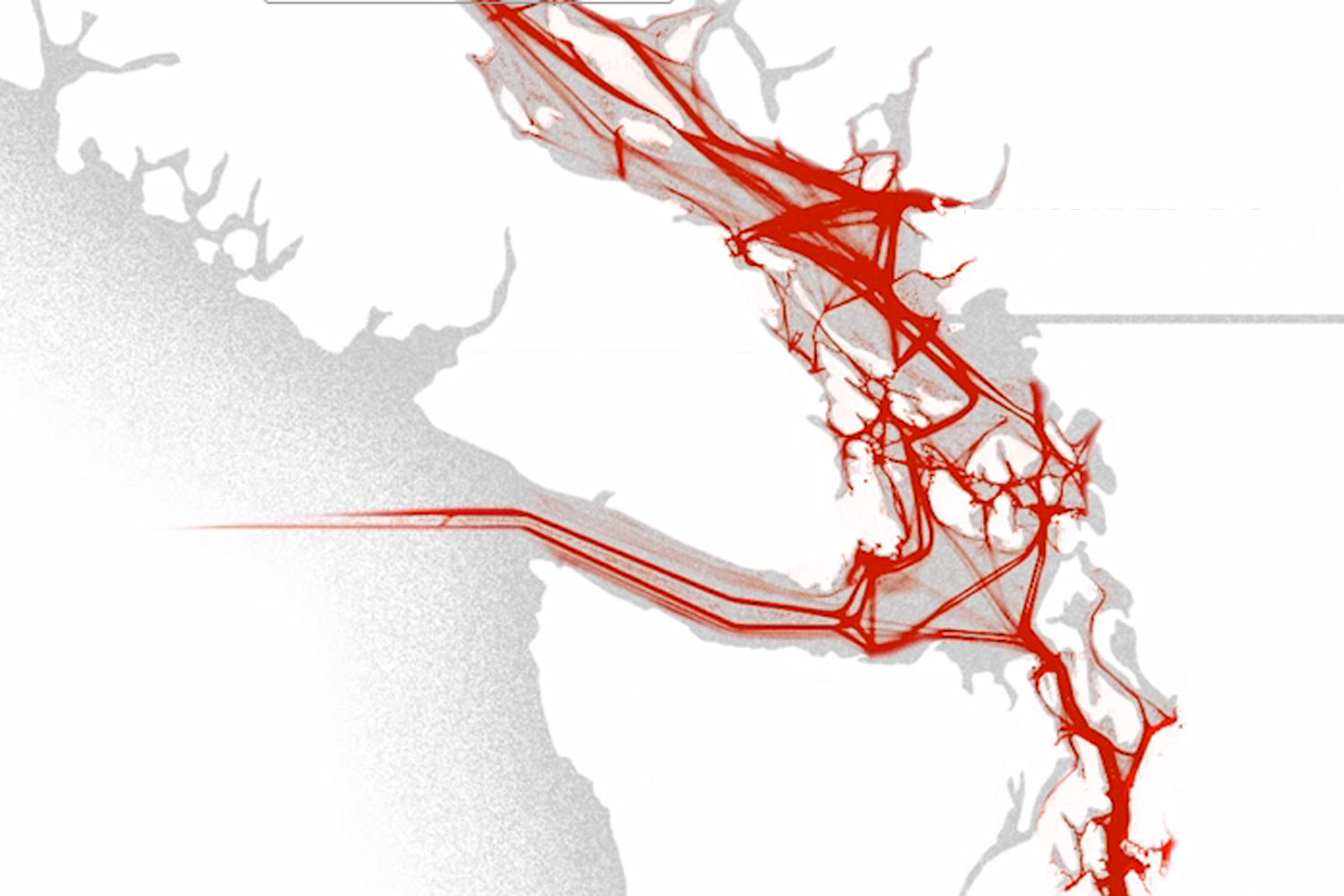 This map shows the path of commercial ships through the Salish Sea, including oil tankers going to and from Kinder Morgan's Westridge Marine Terminal in Burnaby.
